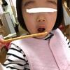 分けて食べなきゃ〜(ㆀ˘・з・˘)