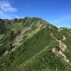 【百名山】南アルプスの女王と呼ばれる仙丈ケ岳にあえて小屋泊で登ってみた記録