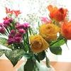 「花いっぱいプロジェクト」~花を贈ってみませんか?~