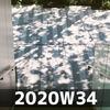 週報 2020W34