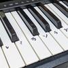 アナ雪をピアノで弾いてみた。ドレミ手書きの鍵盤で弾くとそれなりに弾ける。
