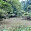 釜屋谷の上堤(石川県輪島)