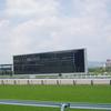 札幌芝2000m(2歳戦)種牡馬別ランキング