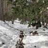 夜叉神峠  〜シーズン最後の雪山か〜