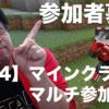 マインクラフト マルチプレイ参加者募集(PS4版)