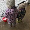 ようやくできた雪遊び