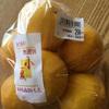 【高知】分担のつぎは小夏、柑橘類が豊富です!