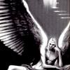 堕天使ルシフェル!そして4コマ!「蝉はにげる」