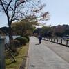 水戸黄門漫遊マラソン以来の千波湖ラン