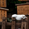 奈良町 猫の町/奈良の旧市街は「にゃらまち」と言われるほど猫の多い町です。ニャンで、かな?!