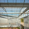 2021年5月の出来事 農業センター版