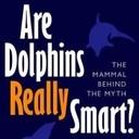 消費者運動「鯨類に感謝 @ Thanks Cetacea」 【鯨類食の理解促進】