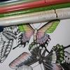 色鉛筆塗り比べ実験