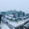 予報通りの大雪です。