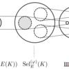 セルマー群と2-descent法