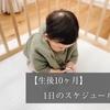 【生後10ヶ月】1日のスケジュール【授乳・睡眠・離乳食】