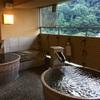 箱根の温泉旅館をデイユース