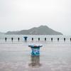 雨、豊島その2。