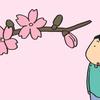 開花のタイミングはそれぞれ?