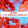 【保存版】10月に見頃を迎える紅葉の名所6選