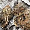 岩牡蠣(いわがき)