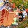 【東京大自然♪】紅葉シーズンの高尾山は今が見頃♪♪
