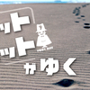 フットハットがゆく【324】「ミニヤギ」|MK新聞連載記事