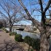 2月の荒子川公園