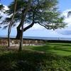新婚旅行で行ったハワイのレポートを再投稿しました