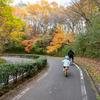 東京ドーム65個分!国営武蔵丘陵「森林公園」で自転車を乗り回す!埼玉県