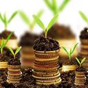 資産運用 検証 健康 ブログ