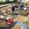 メダカ池の改修