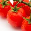 【トマト日記】猛暑でトマト全滅の危機
