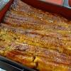 川魚料理「玉泉」~いいね!活鰻から調理。うなぎは好きだなあ。