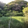 巨人が山をひとまたぎ デーボコ坊の足跡(横須賀市)