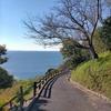 昭和の時代には東海の熱海とも言われた西浦温泉を訪ねて