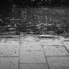 雨の朝はアスリート ※メディア掲載記事