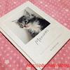シルルのフォトアルバム:メインクーン猫シルルのもふもふ