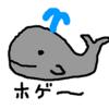 【捕鯨】なぜ日本はクジラを捕獲し続けるのか?
