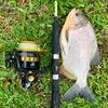 バリ島で釣りをしよう!ウブドのアマゾン釣り堀でバリの一日を満喫。The Predators Bali*