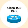 IOS: BGP_異なるASに対するEBGPロードバランス