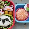 ~かまぼこカエル&おたまじゃくしキャラ弁~冷凍食品を使わず可愛い幼稚園弁当