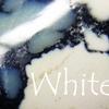 ホワイト・バッファロー:White Buffalo ちゅ~タイトルの雑談