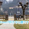 2021.3.10 【Emmaの見てる景色】 バルコニーから毎日見ている庭に降りてみた‼️ Uno1ワンチャンネル宇野樹より