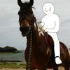 【沖縄ひとり旅2016】往路と乗馬。【1日目】