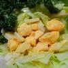 レクチンフリーペコリノロマノと黄身のサラダ