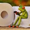 世界1!外国から見た日本のトイレの凄いところを5つ紹介するよ