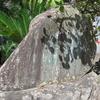 万葉歌碑を訪ねて(その764)―和歌山市 紀三井寺本堂前―万葉集 巻七 一二一三