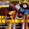 【星ドラ】大魔王ゾーマ魔王級ソロ攻略レポート!耐性ガン積みで痛くない!恐れず挑戦してみて♪【星のドラゴンクエスト】