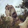 巨岩に滝に産業遺産!!この夏、冒険の旅をしようじゃないか!滋賀の絶景「湖南アルプス」へようこそ。